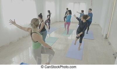 vrai, yoga, gens, gymnase, régulier, studio, pendant, pratiquer, équilibre, classe, corps