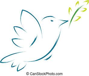 vrede, bloem, duif