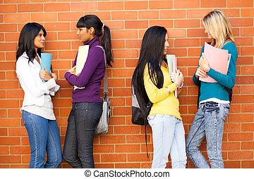 vrienden, jonge, vrouwlijk, kletsende, universiteit