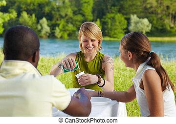 vrienden, picknicking