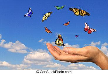 vrijgegeven, hand houdend, buttterflies