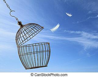 vrijheid, concept., het ontsnappen, van, de, kooi