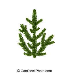 vrijstaand, groene, tak, voor, kerstversiering