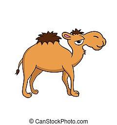 vrijstaand, illustratie, kameel