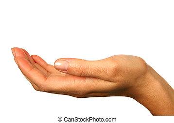 vrijstaand, menselijke hand