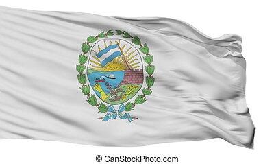vrijstaand, rosario, stad, vlag, argentinië