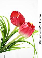 vrijstaand, tulpen