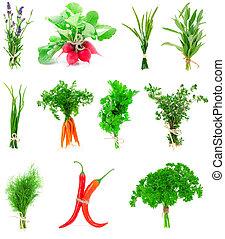 vrijstaand, verzameling, keukenkruiden, achtergrond, groente, fris, witte