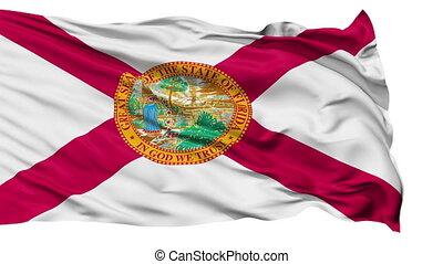 vrijstaand, zwaaiende , nationale vlag, van, florida