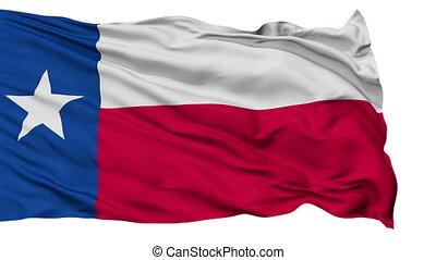 vrijstaand, zwaaiende , nationale vlag, van, texas