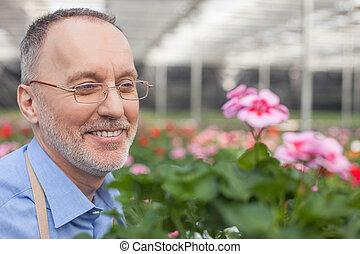 vrolijk, senior, bloemist, is, werken aan, het centrum van de tuin