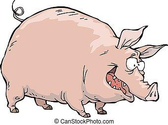 vrolijk, varken