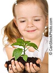vrolijke , klein meisje, vasthouden, een, nieuw, plant, met, terrein
