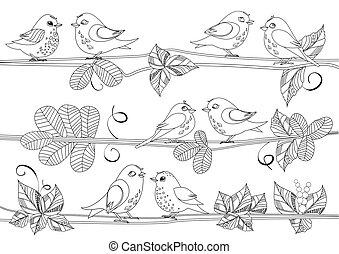 vrolijke , vogels, zittende , op, takken, van, boompje, voor, jouw, kleurend boek