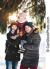 vrolijke , winter, gezin, bos