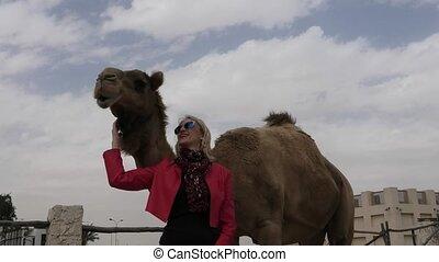 vrouw, aanrakingen, kameel
