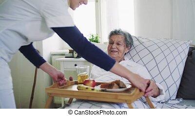 vrouw, bezoeker, bed, het brengen, gezondheid, ziek,...