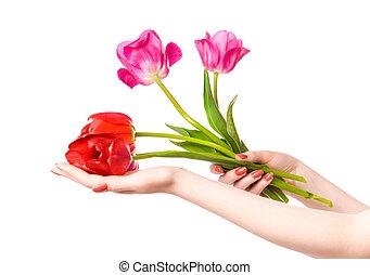 vrouw, bloemen, handen