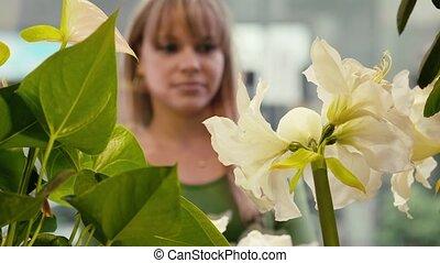 vrouw, bloemen, shoppen
