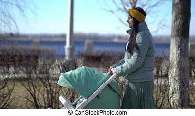 vrouw, door, kinderwagen, wandelende, park