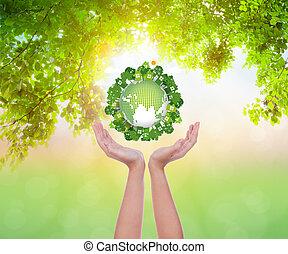 vrouw, eco, handen, aarde, houden, vriendelijk