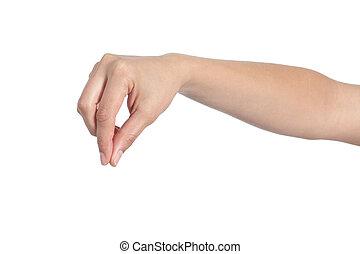 vrouw, hand houdend, iets