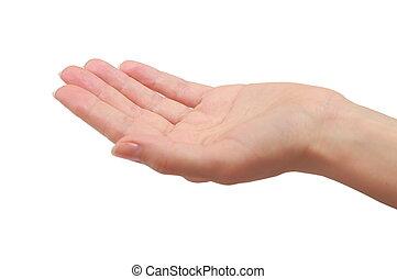 vrouw, hand, palm, vasthouden, of, geven, something.,...