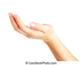 vrouw, het tonen, open hand, of, vasthouden, iets