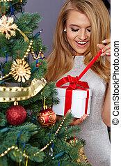 vrouw, het verfraaien van de boom van kerstmis