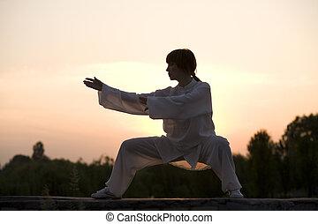 vrouw, in, witte , kostuum, make\'s, taiji, chuan, oefening