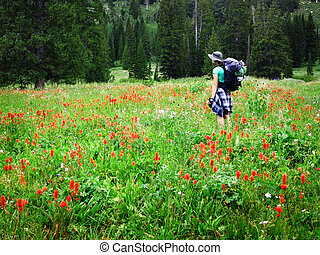 vrouw meisje, backpacking, met, wildflowers, boeiend, foto