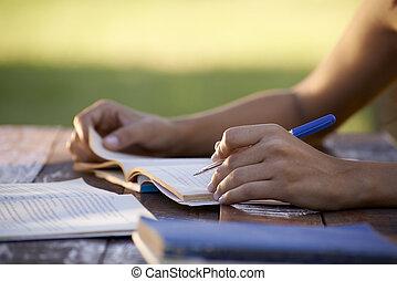 vrouw, mensen, studerend , universiteit, jonge, opleiding, test