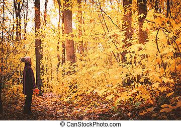 vrouw, met, fallen loof, in, de, herfst bos