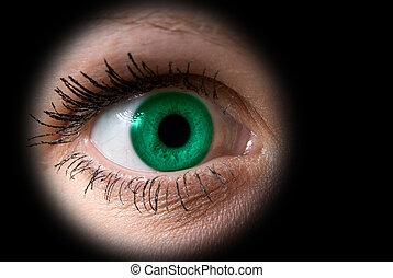 vrouw oog, groene