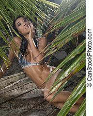vrouw, palm, sensueel, bomen, tussen