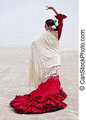 vrouw, traditionele , danser, spaanse , rood, flamenco, jurkje