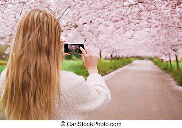 vrouw, tuin, blossom , lente, jonge, telefoon, beweeglijk, schietende
