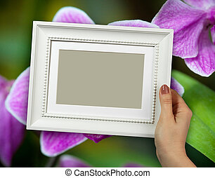 vrouw, van hout vensterraam, bloem, closeup, achtergrond, handen, orchidee