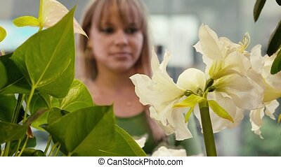 vrouw winkelen, voor, bloemen