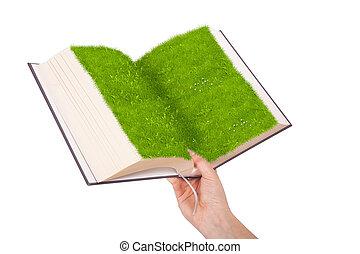 vrouwelijke hand, ecologisch, boek, vasthouden, gras