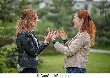 vrouwen, gezicht om te confronteren, hebben, gesprek, gesticulate, met, handen