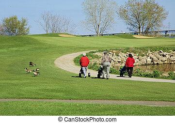vrouwen, golfing