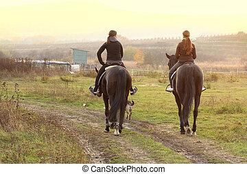vrouwen, paardrijden, paarden