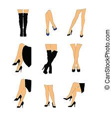 vrouwen, set, benen