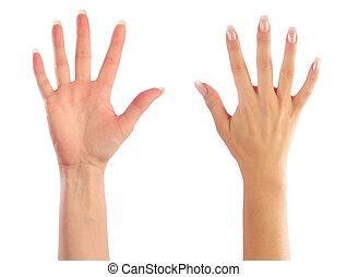 vrouwenhanden, telling, nummer 5