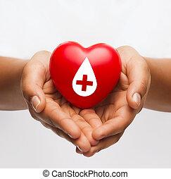 vrouwenhanden, vasthouden, rood hart, met, donor, meldingsbord