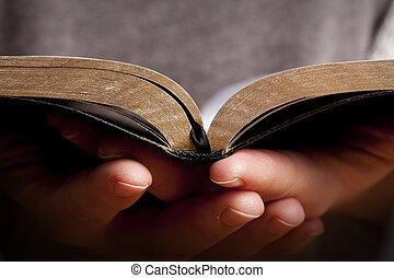 vrouwenholding, bijbel