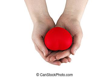 vrouwenholding, rood hart, in, handen, een, witte achtergrond, closeup