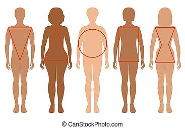 vrouwlijk, types, silhouettes., vijf, figuren