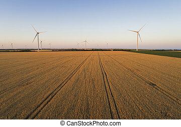 vue à vol d'oiseau, beau, éoliennes, field., paysage